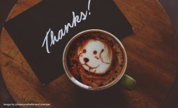 Easy and Creative Ways to Thank Your Social Media Followers