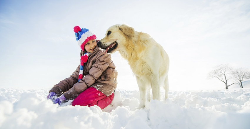 Playful girl with her dog enjoying in snow.