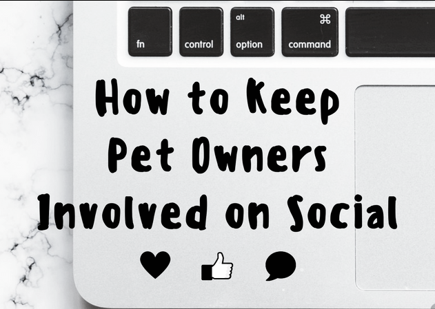 how to keep pet owners involved on social media