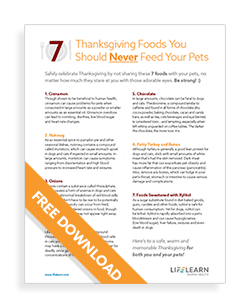 7 Thanksgiving Foods You Should Never Feed Your Pets PDF